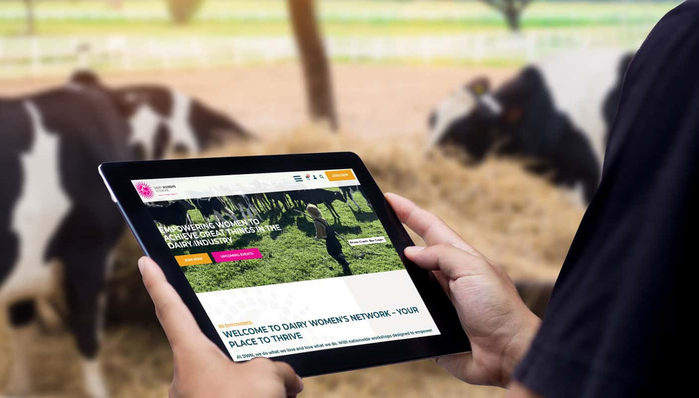 farmer on ipad reading farming website featuring copywriting service done by auckland web design company